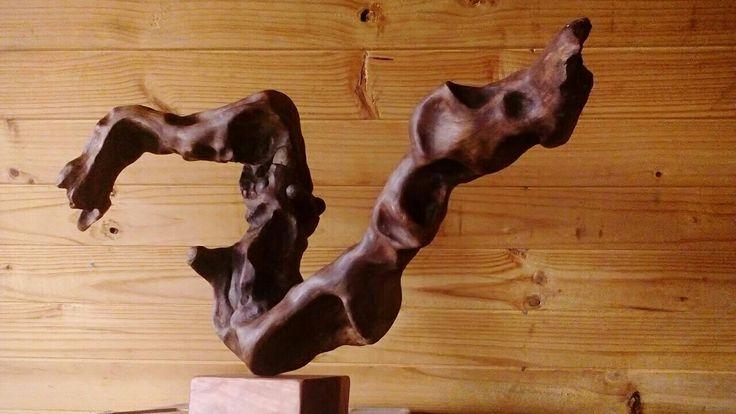escultura de madera  Erosión Natural por el Agua Cardonal,  Pelluhue. Chile