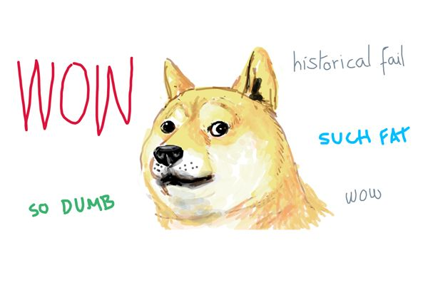 Shiba Inu Meme What Is A Doge Exactly My First Shiba Inu Shiba Inu Shiba Inu Dog Dog Names