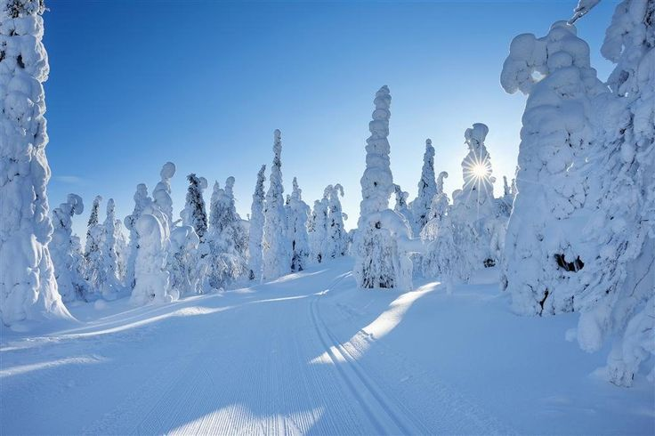 Laponia finlandesa · National Geographic