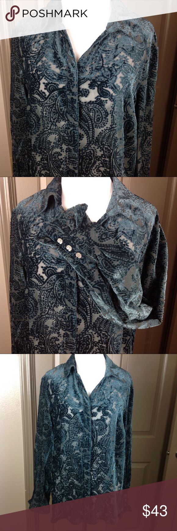 Coldwater Creek Top Lg Green Velvet Button Down Great Condition Coldwater Creek Top Large Mesh with Green Velvet Paisley Design Button Down 61/39 Rayon/Nylon Coldwater Creek Tops Blouses