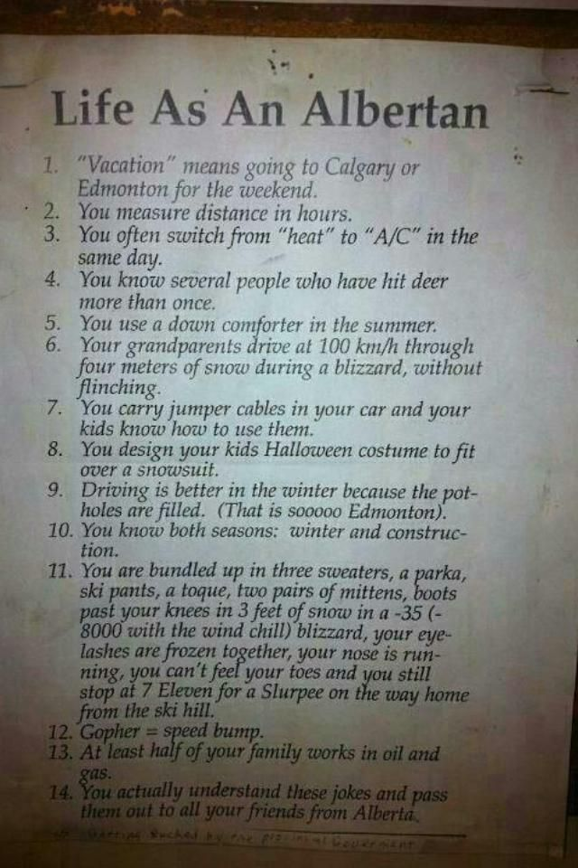Life as an Albertan: Yep ✅, totally understood them & Yep ✅, sharing with friends from Alberta ☺️