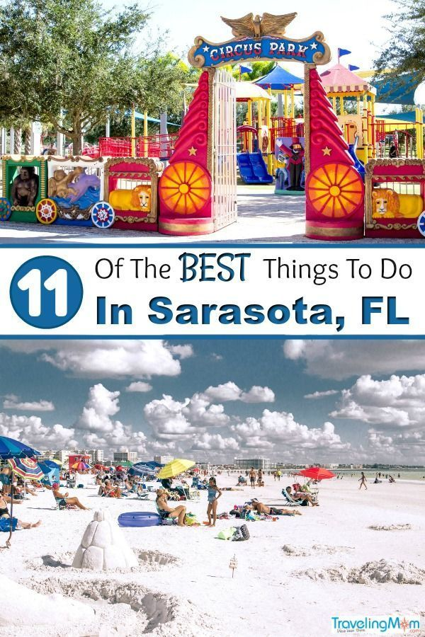 11 of the best things to do in sarasota with kids united states rh pinterest com  what to do in the keys for a day