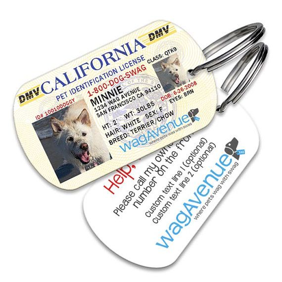 California Driver's License Pet Tag - Personalized Pet Tags, Custom Pet Tags, Dog ID Tag, Stainless Steel Dog Tags, Dog License Tags