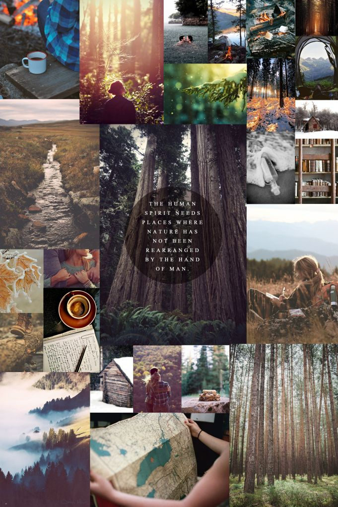 What a fantastic vision board that captures the beauty of #nature. Do you have any eco-goals--goals that emphasize sustainability, green living, or Earth appreciation? If so, let us know what they are! Join us on goaloop®: https://goaloop.com/signUp?ref=48148330-8bb0-48e3-b427-0e2790b6060b&refPId=05b9a7817bd230f56b0b040c55f94291