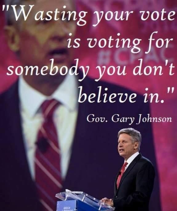 Image result for image of gary johnson on energy