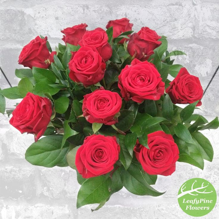 12 Red Rose Bouquet. Ideal for Valentine's!! ❤️❤️