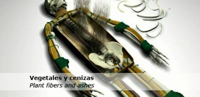 Momia Chinchorro. Animación Realizada para Museo de Arte Precolombino - Chile (2008) by Pablo Vergara