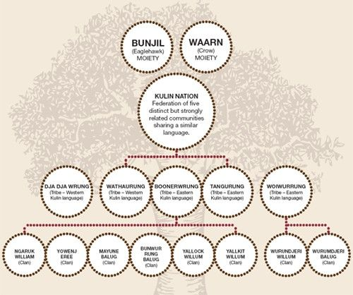 The breakdown of the Kulin nation http://www.bayside.vic.gov.au/indigenous_bayside_nation_structure.htm
