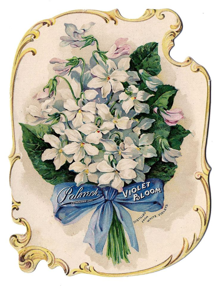 Romantic Violets Perfume Ad