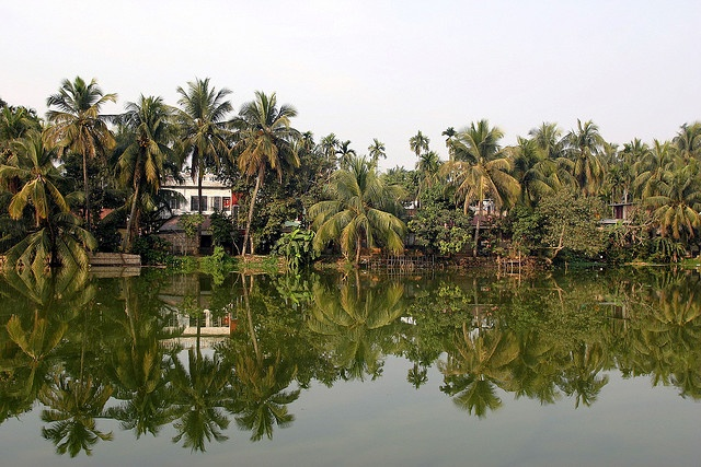 Agartala, Tripura, India : this is the view  my mom grew up with .....so Nostalgic....