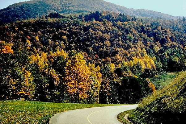 Oh yeah!  one of the most exceptional North American autumn tree color spots to enjoy.: The Blue Ridge Parkway in North Carolina