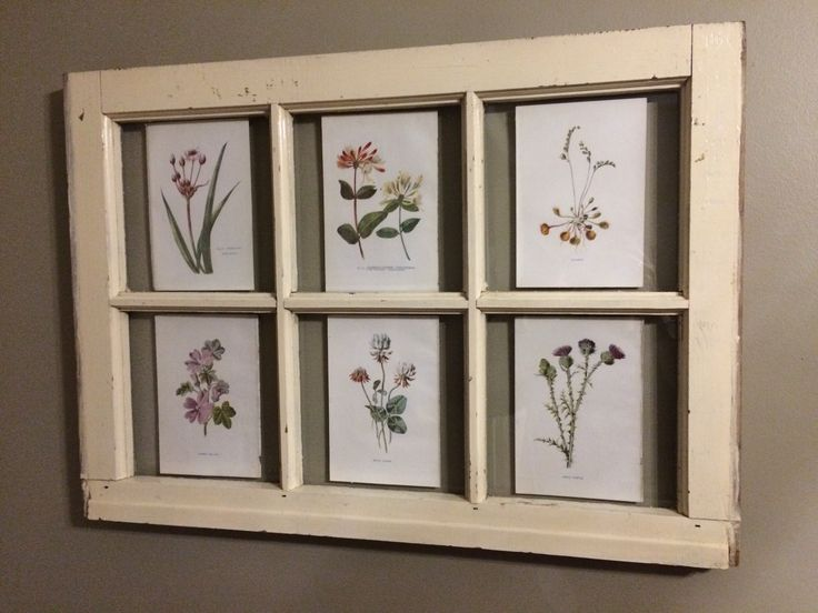 DIY old window frame with late 1800 / early 1900 botanical prints