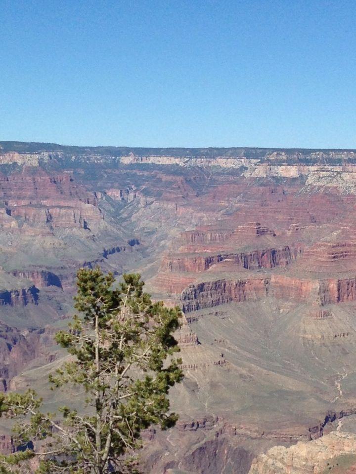 Grand Canyon South Rim, Flagstaff Arizona #GrandCanyon  #train #Flagstaff