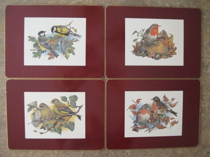 Bird Cork Backed Placemats Lot of 4 European Songbirds Greenfinch Great Tit