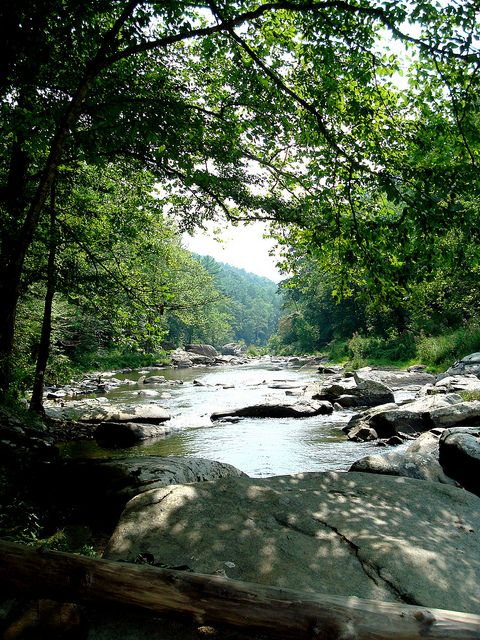 Boone nc if i 39 m not going to catch anything then i 39 d for Fishing in boone nc