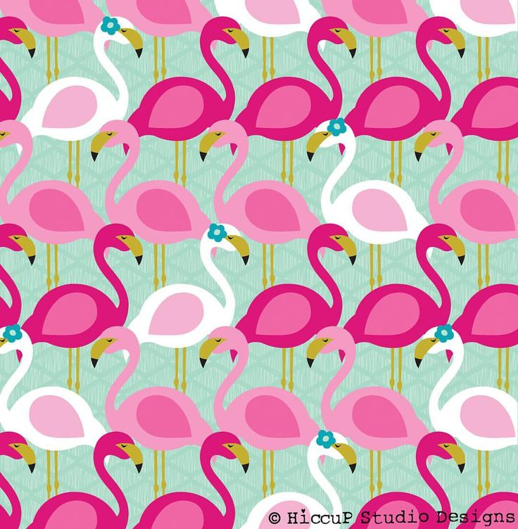 Who knew that the word for a flock of flamingoes is a 'flamboyance'?!? How amazing is that? ..... and on a side note how is there no flamingo emoji??? Sort it out emoji people. #missingemoji #flamboyanceofflamingos #flamingo #artlicensing #surfacepattern #hiccupstudiodesigns