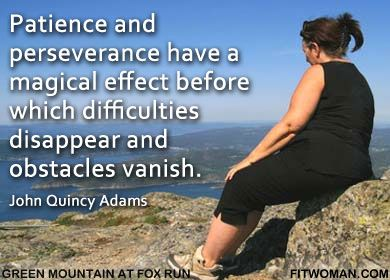 Essay on patience and perseverance can overcome mountains