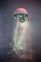 Medusa by Stella Cadente
