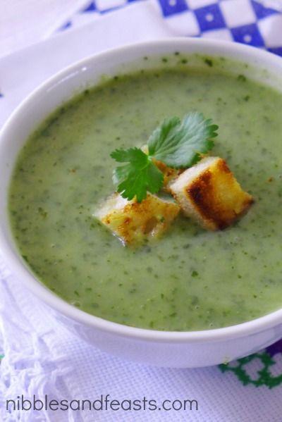 Sopa de Cilantro 3 calabazas picada 6 t de agua 1 cdita de caldo de pollo en polvo 1 t de caldo de verduras o pollo 1 t de cilantro, 2 cdas mantequilla sin sal 2 cdas de cebolla, finamente picada En una olla mediana, hierve las calabazas  hasta que estén tiernas, aproximadamente 12 minutos. En una licuadora, combina la calabaza, 1 taza de caldo de verduras o pollo mezcla hasta que esté como pure. Añade el cilantro  licua  En olla derrite la mantequilla a fuego c