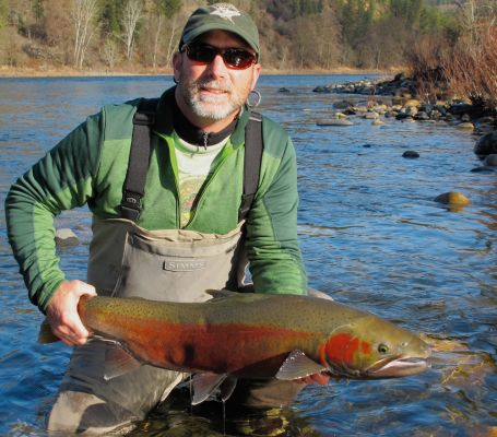350 best images about steelhead fishing on pinterest the for Idaho steelhead fishing report