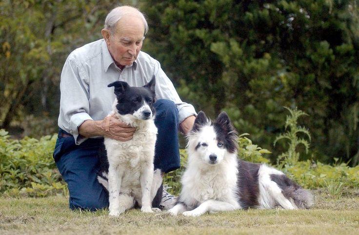 Golden Girls: Als die Besitzerin Nora Hardwell 2002 starb, vermachte sie ihren Collie-Damen Tina und Kate 450'000 Pfund und 4 Hektaren Land.