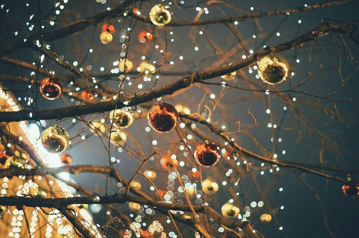 christmas lights winter christmas christmas time holy night lamp light winter wonderland character aesthetic lightbox beautiful pictures