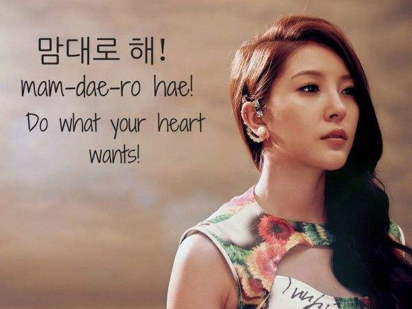 Vingle - Do What Your Heart Wants (Featuring BoA) - K-Idol Flashcards! Learn Korean With K-Entertainment!