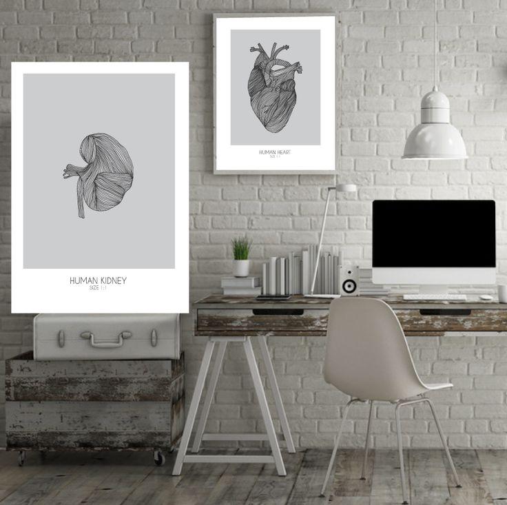Human kidney Human heart - handmade with pen.