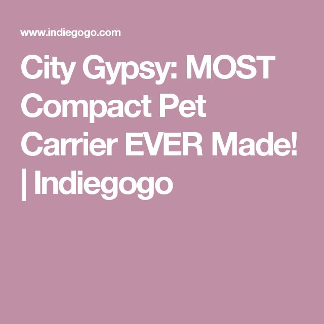 City Gypsy: MOST Compact Pet Carrier EVER Made! | Indiegogo
