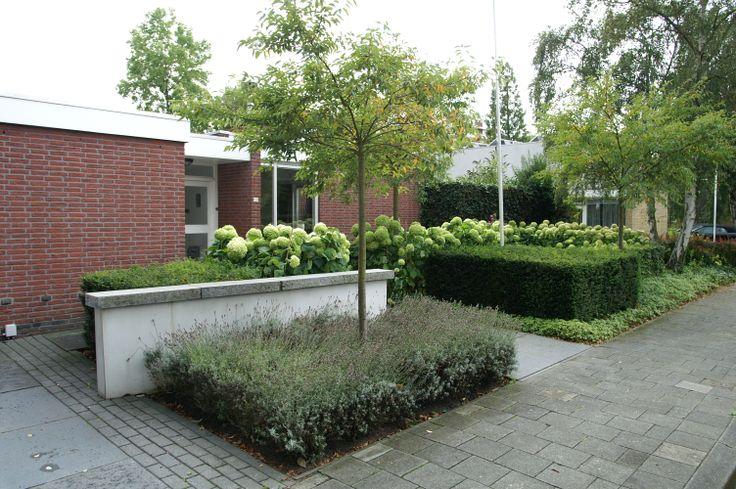 Stadstuin | Strakke blokhagen van taxus in deze voortuin.  Ontwerp en aanleg hoveniersbedrijf van Elsäcker tuin. www.tuintuintuin.nl
