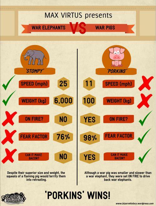 War Pigs VS War Elephants… which will win?  Read the full story; https://bizarrehistory.wordpress.com/2015/02/14/war-pig-vs-war-elephant/
