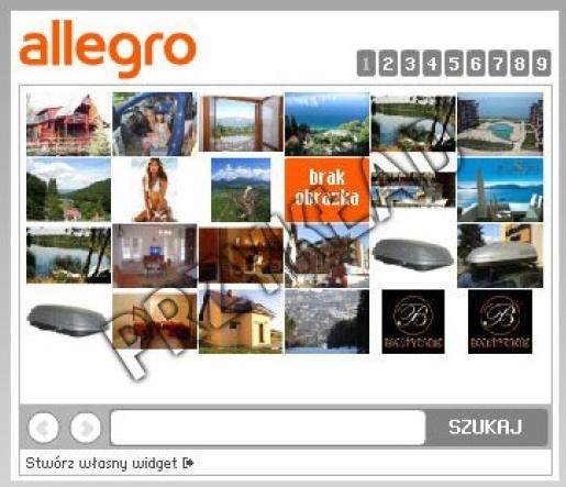 Przykładowy widget Allegro, który osadzamy na Facebooku