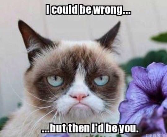 Really Funny Meme Jokes : Best grumpy cat just for you images funny