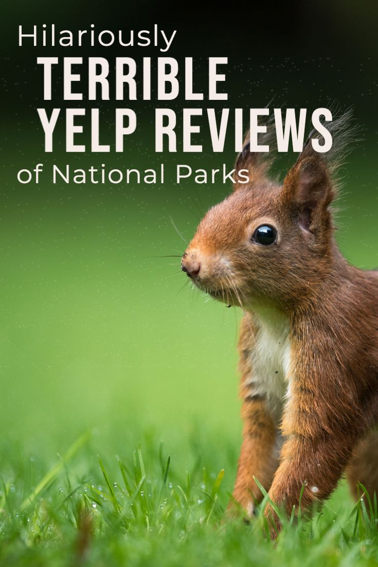 Hilarious Terrible Yelp Reviews of National Parks