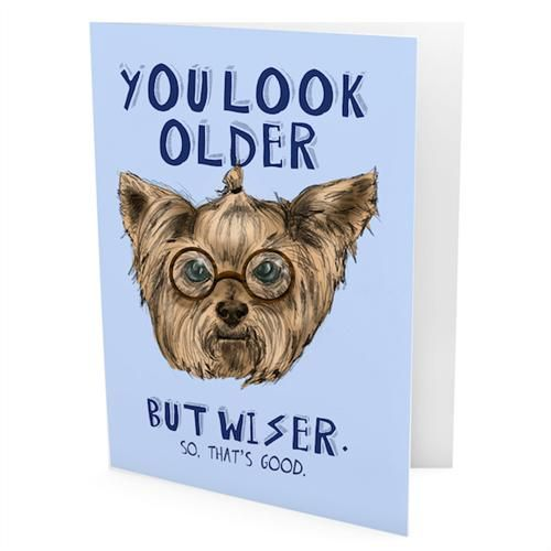 You Look Older But Wiser So That's Good - Card by Evie Kemp