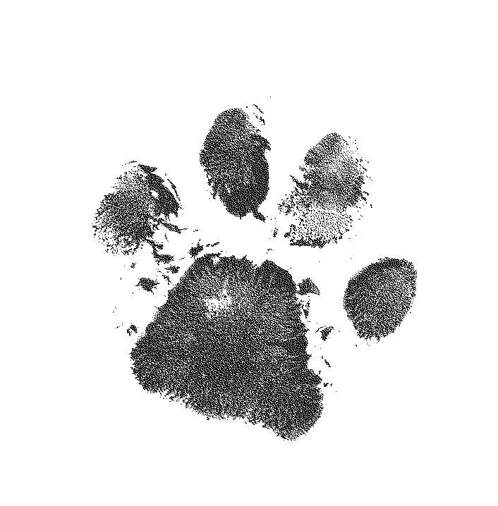 Heartbroken Make Your Mark Cat Paw Print Tattoo