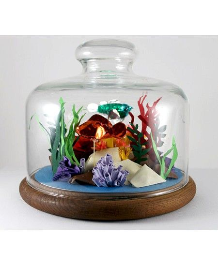 Fancy Fish Tanks 29 best fishy stuff images on pinterest   fishbowl, animals and
