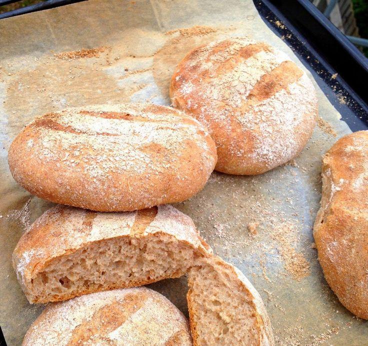 Fleur d'oranger, Masala & Co..: Moroccan whole wheat bread: Khobz zra'a for my 500th post