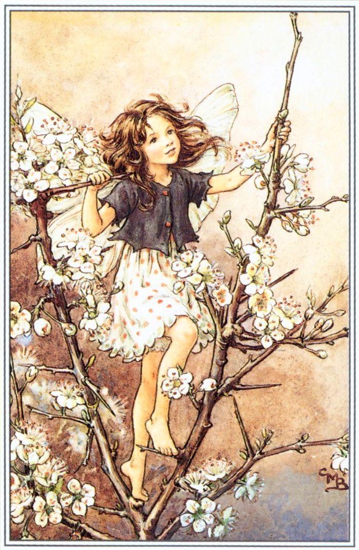 открытки с феями цветов головной убор верки