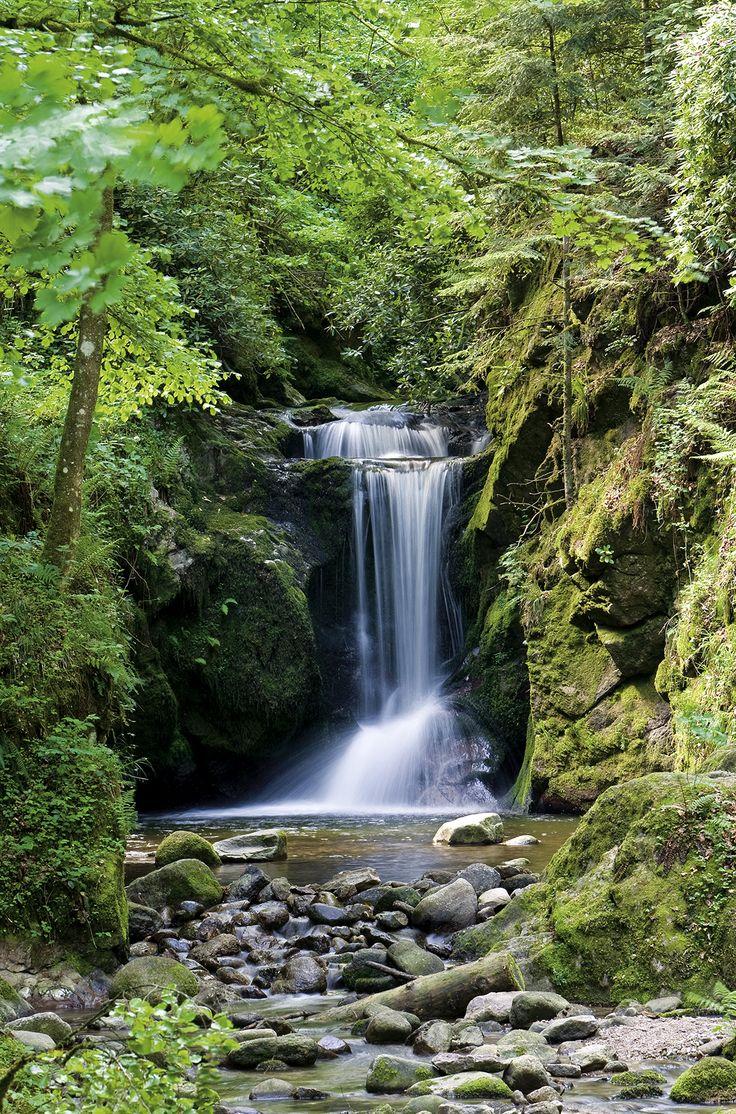 Wanderweg am Geroldsauer Wasserfall Baden-Baden