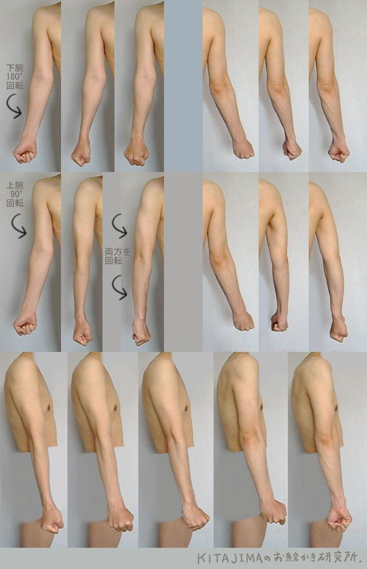 top 25 best anatomy reference ideas on pinterest body reference