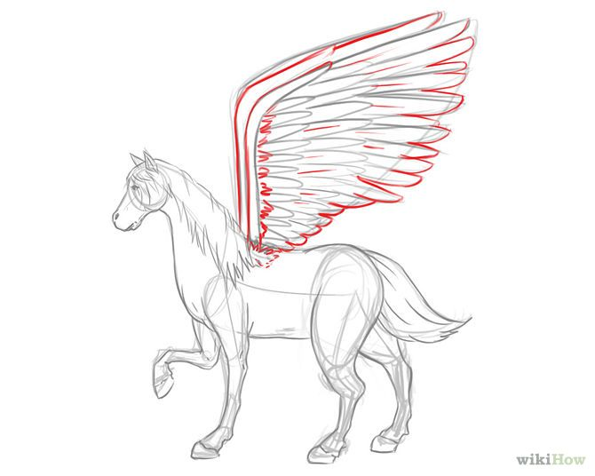 how to draw a pegasus video