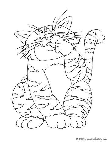 Lovely Big Fat Cat Coloring Page Nice Drawing For Kids More Animals