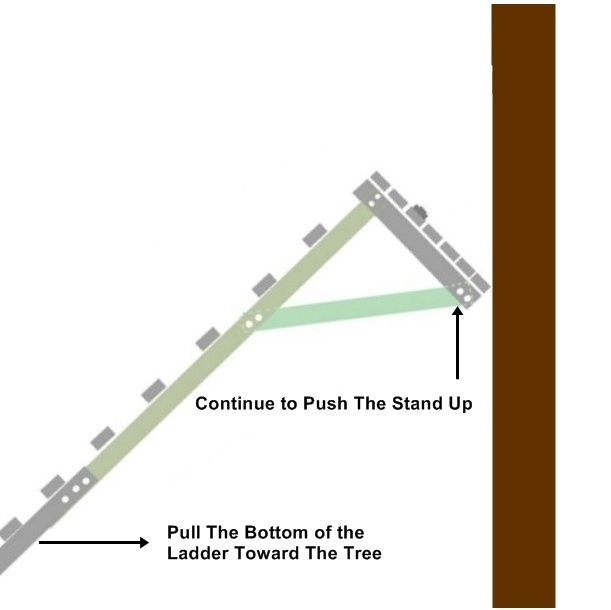 948 best tree stand ideas images on pinterest hunting for Climbing tree stand plans