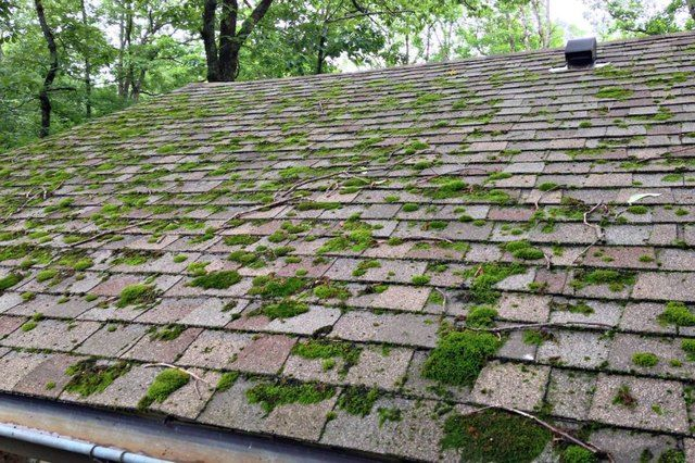 Rid Your Roof Of Moss Hunker Diy Home Improvement Roof Cleaning Moss Removal