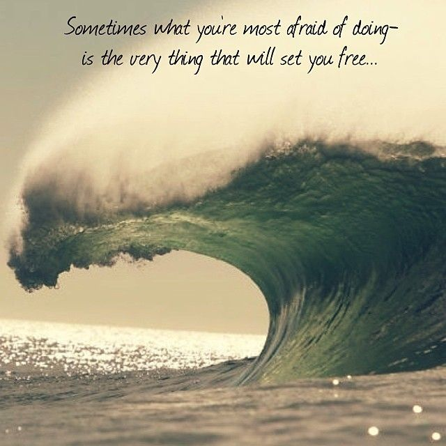 Surfing Quotes Glamorous 230 Best Surf Quotes Images On Pinterest  Surfing Surfing Quotes