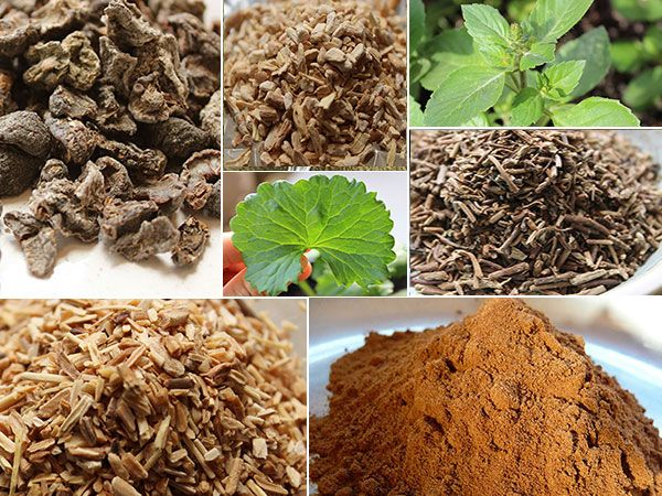 Ayurvedic Herbs - The Tonic Superfoods of Ayurveda ~ via www.superfoods-for-superhealth.com/ayurvedic-herbs.html