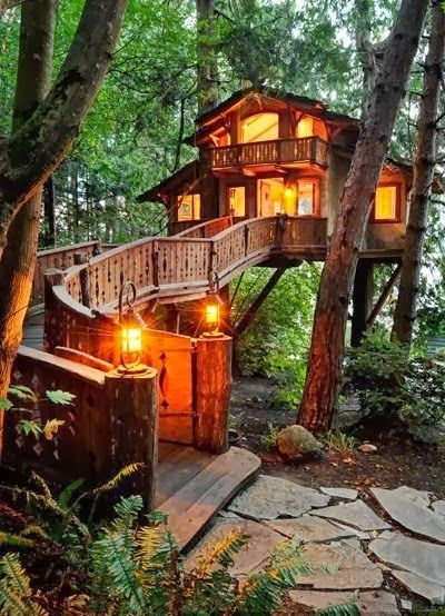 "I'm pretty sure I could go ""roughing it"" in one of these tree houses!"