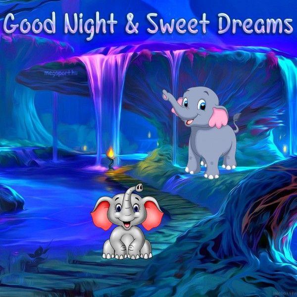 Goodnight Night Cartoon Elephant Waterfall Sweet Cute Good Night Sweet Dreams Good Night Greetings Good Night Love Images