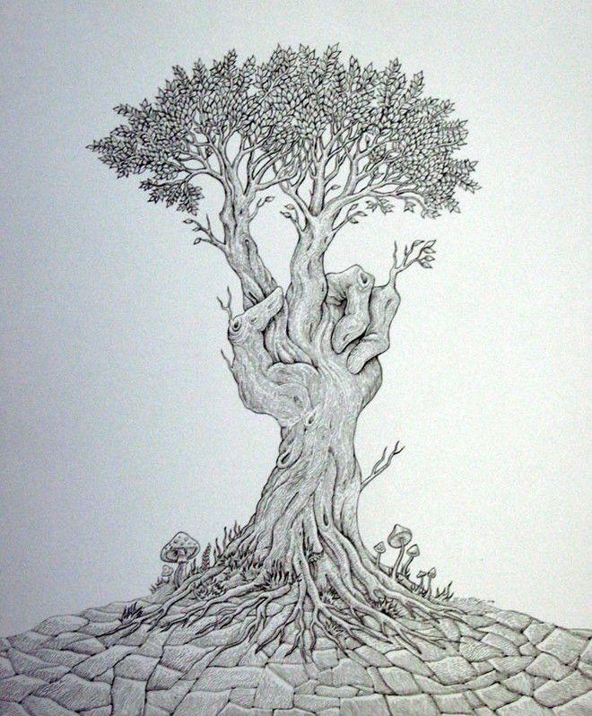 Tree Drawings 9 Tree Drawing Tree Art Plant Art